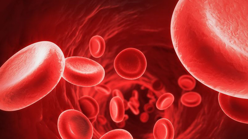 Anaemia: Definition, Treatment, Symptoms And Causes