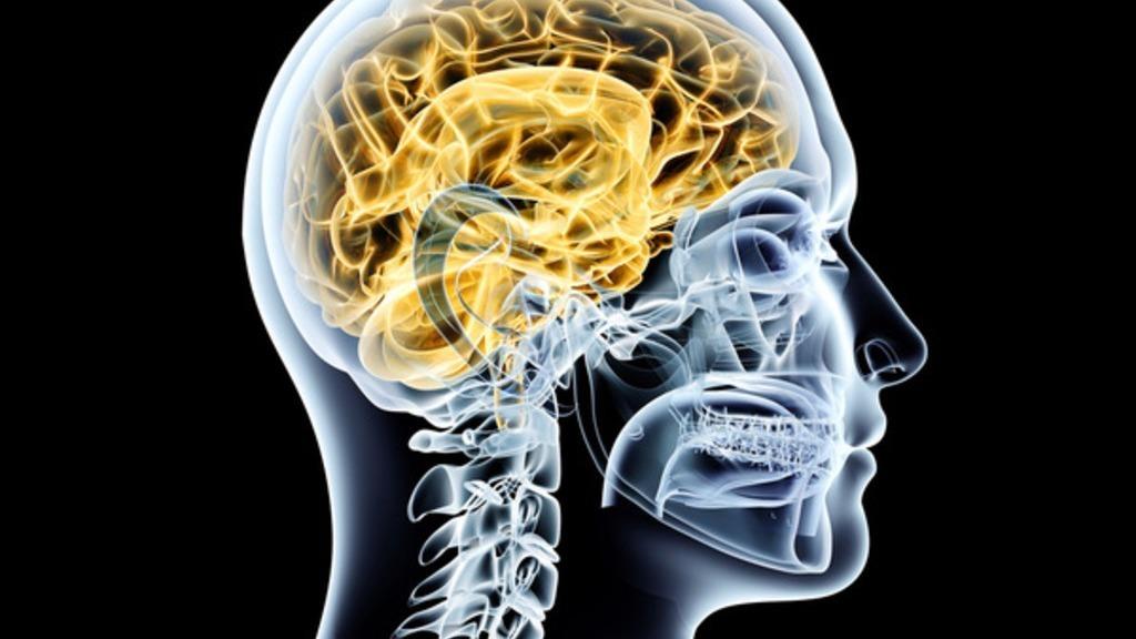 Parkinson's Disease: Symptoms, Treatment And Prognosis