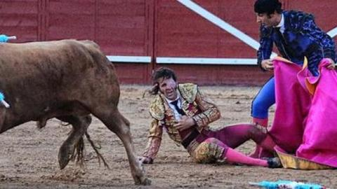 This Successful Bullfighter Was SCALPED During A Bullfight But His Reaction Was Unbelievable