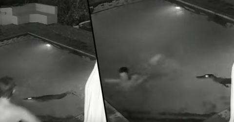 This Couple Were Having A Romantic Late Night Dip... Until They Were Interrupted By Something Terrifying