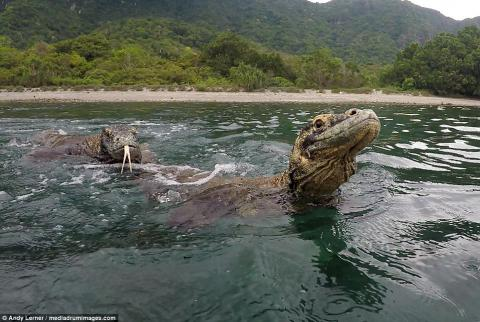 He Was Fishing When A Terrifying Creature Leapt Out Of The Water And Attacked Him