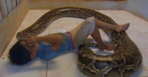 This Little Boy Slept With A Python Every Night... 11 Years Later, This Is What They've Become