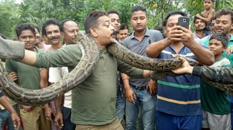 Man In India Nearly Dies After Attempting A Selfie With A Python