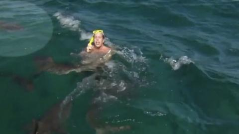He Was Filming His TV Show When A Shark Attacked Him Out Of Nowhere