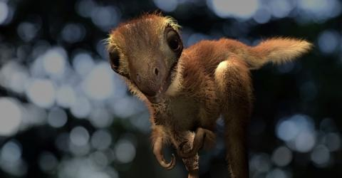 We Finally Know What A Baby T-Rex Really Looked Like