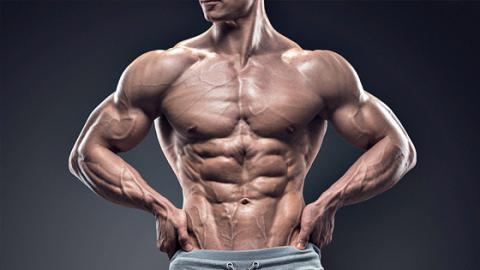 These Are The 4 Key Areas To Train For An (Almost) Perfect Physique