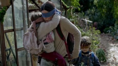 This One Bird Box Scene Has Caused A Huge Controversy