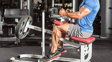 Four Ways To Train Your Calves And Help Them Grow