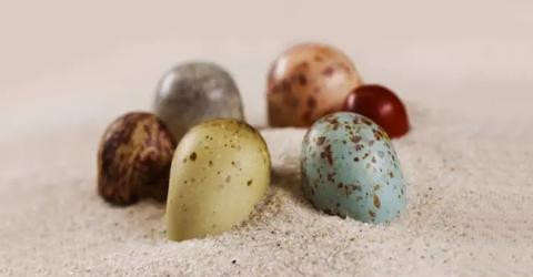 These Fossil Pigments Are Revealing The Amazing Colours Of Dinosaur Eggs For The First Time