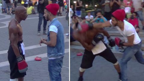 Watch What Happens When This Spectator Challenges A Boxer On The Street