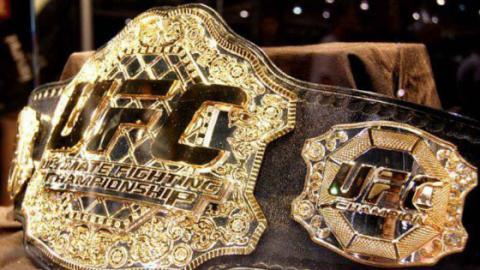 UFC: Is A Heavyweight Tournament A Good Idea?