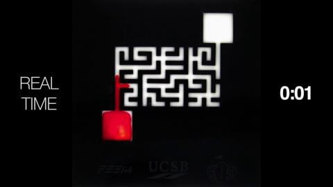 Mind-Blowing Effect Allows Soap To Find The Quickest Way Out Of A Maze (WATCH)