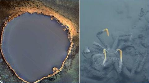 Scientists Discover Deadly Underwater Lake That Will Kill Anything That Swims Near It
