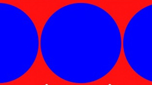 Only 7% Of People Can See How Many Circles Are REALLY In This Image