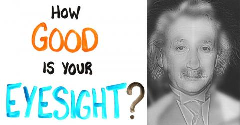 Albert Einstein Or Marilyn Monroe? This Optical Illusion Will Put Your Sight To The Test