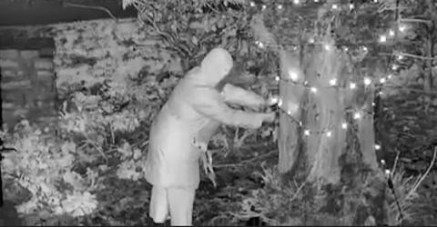 Old Lady Was Caught On Camera Cutting Down Her Neighbour's Christmas Lights