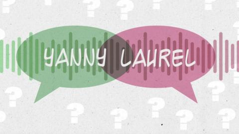 What Do You Hear? Yanny Or Laurel