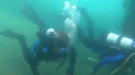 They Went Deep Into The Ocean And Came Across A Creature Hiding In The Depths