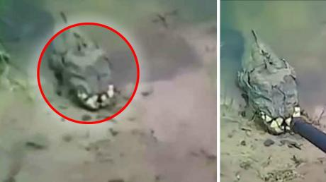 This Bizarre Creature Was Filmed On The Banks Of A Ukrainian River - And No One Knows What It Is