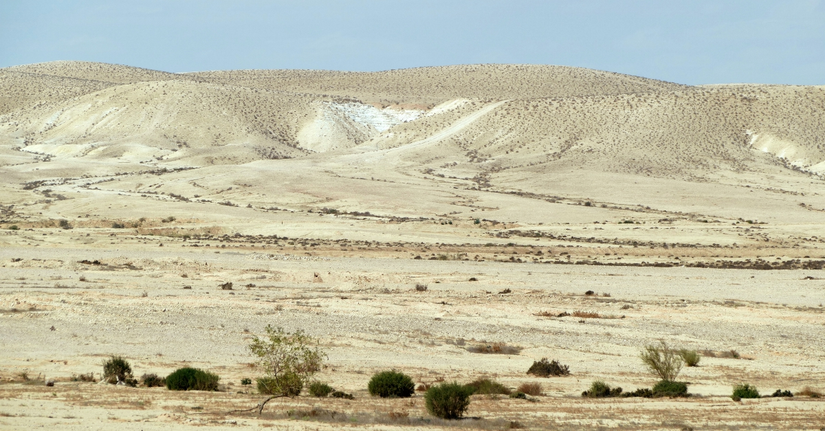 The Incredible Moment A River Sprang Up From This Desert