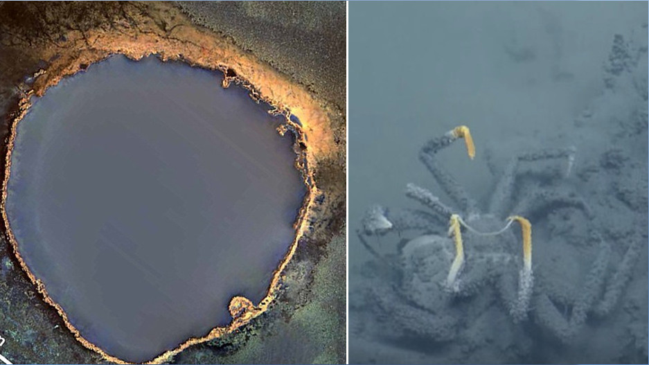 The Deadly Underwater Lake That Will Kill Anything That Swims Near It…