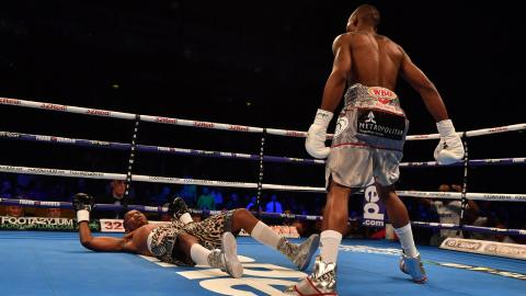 This is the fastest KO in boxing history—blink and you'll miss it