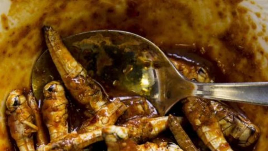 The weirdest dishes from around the world