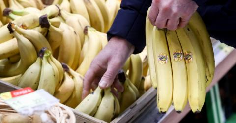 One man finds a deadly surprise hiding amongst his bananas