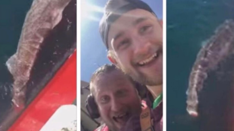 These two fishermen went viral after doing something unforgivable