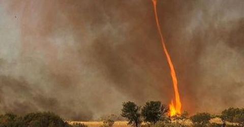 The Impressive 'Firenados' That Are Raging Across Australia (VIDEO)
