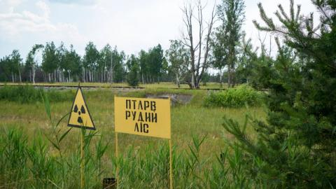 Radiation Levels Have Soared as a Result of the Fires Currently Ravaging the Forest Surrounding Chernobyl