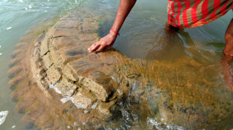 500-year-old sunken temple lost in a flood has finally been rediscovered