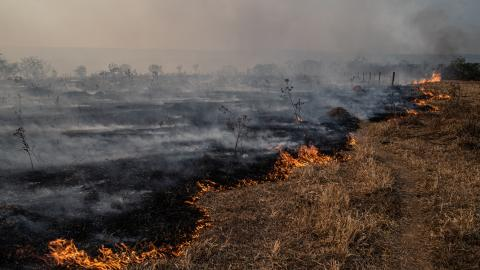 Climate Change Report a 'Code Red For Humanity'