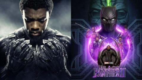 What Does Chadwick Boseman's Death Mean for Black Panther 2?