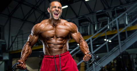This Is How Much Muscle You Can Really Gain In A Month