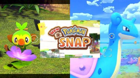 Nobody Panic: A New Pokémon Snap is Coming to Nintendo Switch