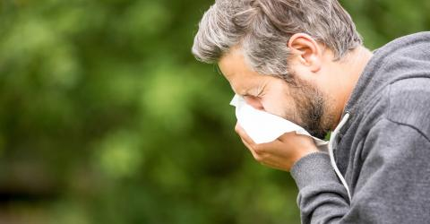 The Nasal Cycle: The Real Reason You Get Those Annoying Blocked Nostrils