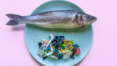 This is the scary amount of plastic we eat every week