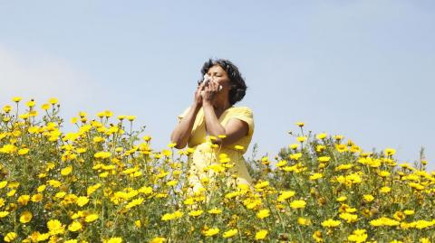 Pollen can carry COVID particles for at least 65 feet