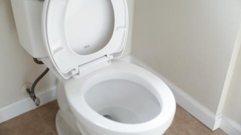 Check your poo for signs of cancer