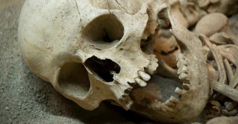 This Terrifying Secret About Our Ancestors Has Researchers Shook