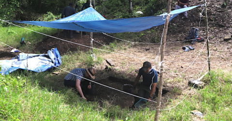 After Letting Archaeologists Dig in His Yard, They Made a Discovery Unlike Any Other