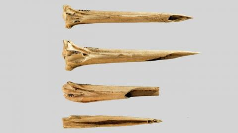Archaeological discovery proves that people were already tattooed over 3620 years ago