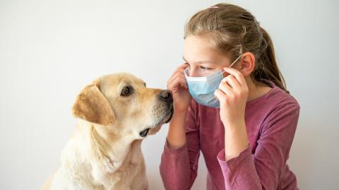 A new coronavirus has been discovered to pass from dogs to children