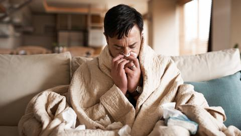 Common cold exposure can help protect against coronavirus