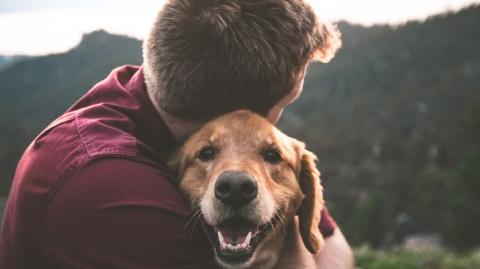 Humans shown to transmit deadly COVID virus to their pets