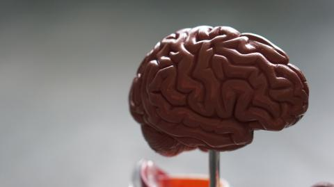 COVID patients with neurological symptoms are prone to Alzheimer's disease