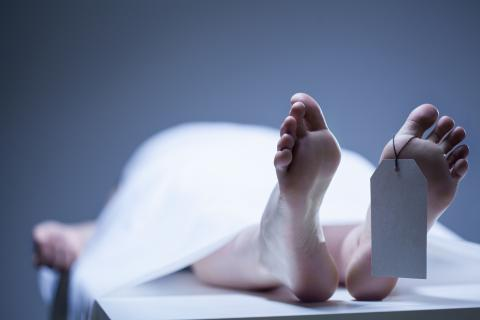 Revealed: What Really Happens In The Brain Moments Before You Die?