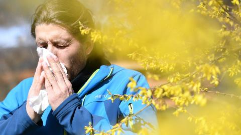 Think your allergies are getting worse? You're not the only one and science explains why