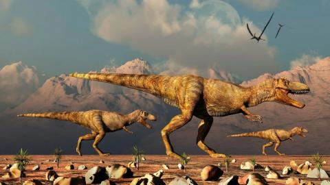 There were so many more T-Rexes on Earth than we thought
